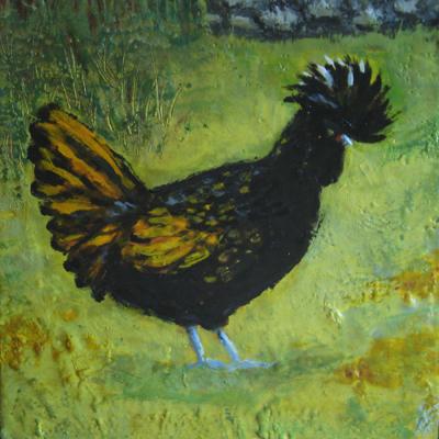 Annie Bonny the Pirate Hen